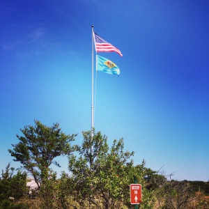 The Delaware flag