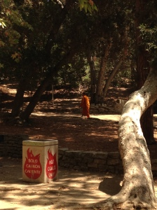 It's human nature to be fascinated by things out of the ordinary or different.  A monk hiking through Los Angeles is definitely out of the ordinary!