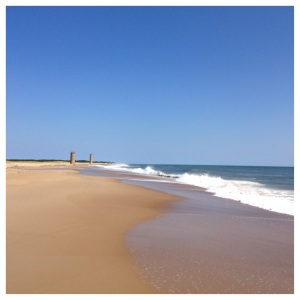 East coast beaches are generally wider and flatter, with calmer surf and more sand dunes, than West coast beaches