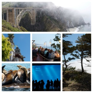 Scenes from the Pacific Coast Highway- bridges & cliffs, Hearst castle, excellent dining, playful wildlife, the Monterey Bay Aquarium, 17 mile drive