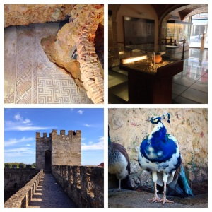 Roman tile mosaics under more modern structures; the Millennium bank museum with a glass floor to begin revealing the treasures below; Lisbon's castle; and the Michael Jackson peacock (because he seems to be turning white)